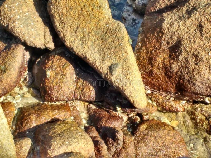 Ocean skały zdjęcie stock