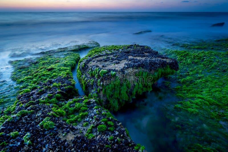 Ocean Stones in Tel Aviv stock photography