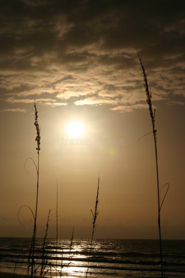 Ocean Sunrise stock photo