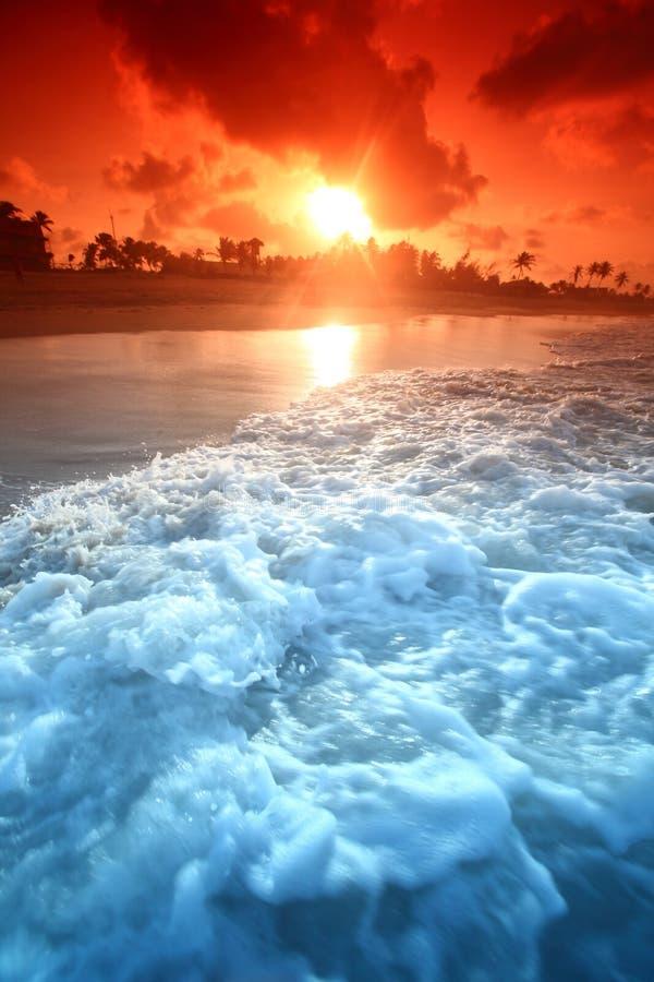 Download Ocean sunrise stock photo. Image of scenic, poster, orange - 8136704