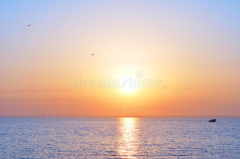 Download Ocean sunrise and birds stock photo. Image of boat, city - 17877482