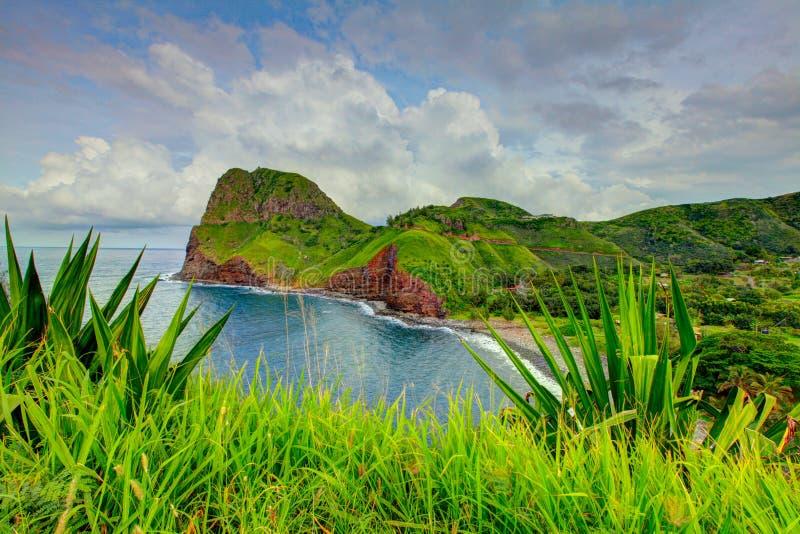 Ocean view. Grass at the foreground. Road to Hana, Maui, Hawaii royalty free stock photo