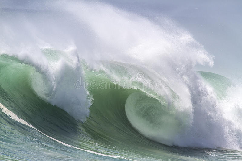 Ocean Wave. Picture of Perfect Ocean Wave. Indian Ocean royalty free stock photo