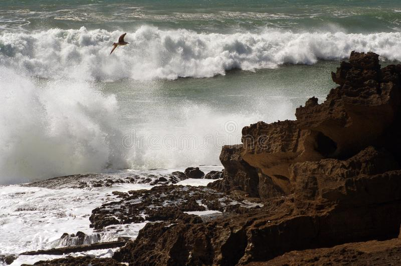 Ocean waves. Coast of Portugal, Ericeira stock photography