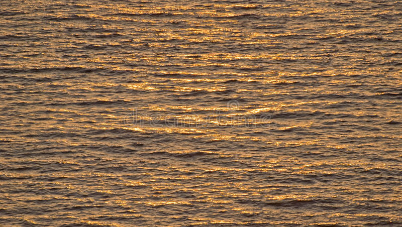 Ocean waves in sunlight. Ocean waves bathed in late afternoon sunlight stock photography