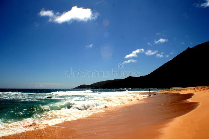 ocean wody obraz royalty free