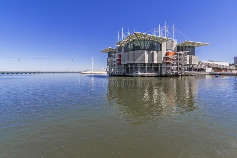 Oceanario De Lisbonne/Oceanarium - Lisbonne photo libre de droits