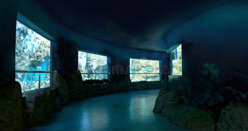 Oceanarium arkivbild