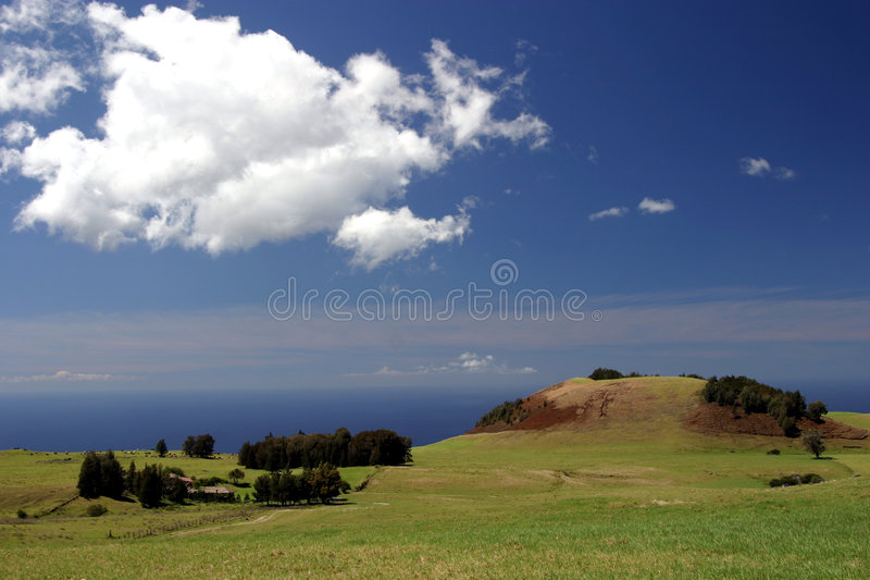 Oceanfront Hawaii Ranch royalty free stock photography