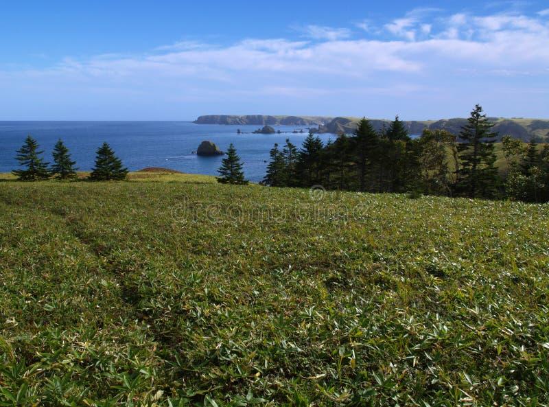Download Oceanic landscape stock image. Image of grass, rocks, gulf - 7507403