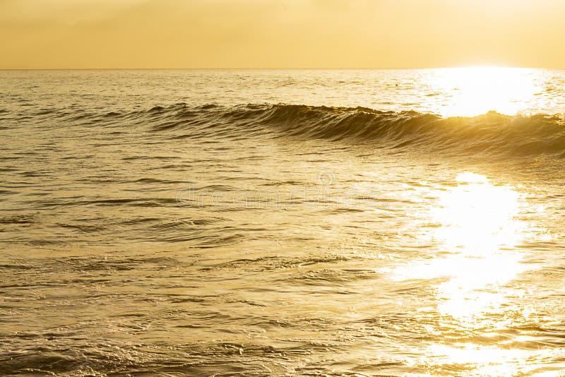Oceano amarelo com o inchamento de cruzamento da onda do córrego brilhante da luz solar sillouetted com extensão textured do ocea imagem de stock