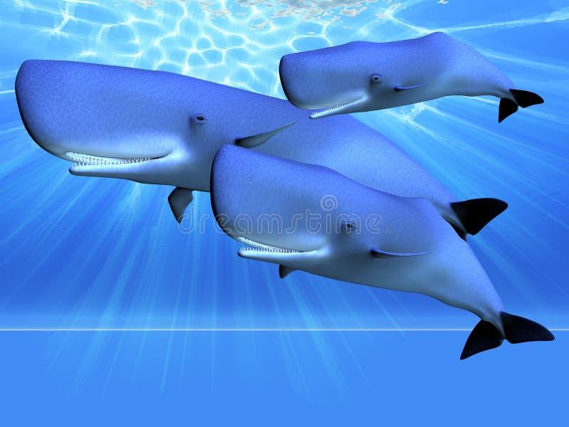 Oceano azul ilustração do vetor