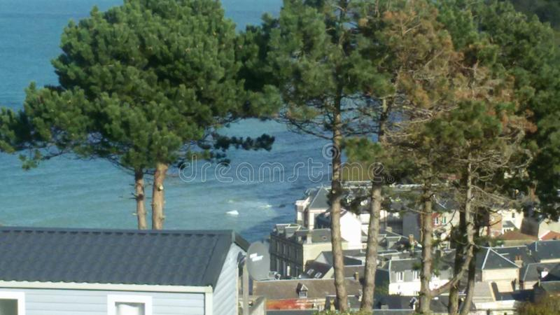 Oceano blu e freddo con i pini in Normandie fotografia stock libera da diritti