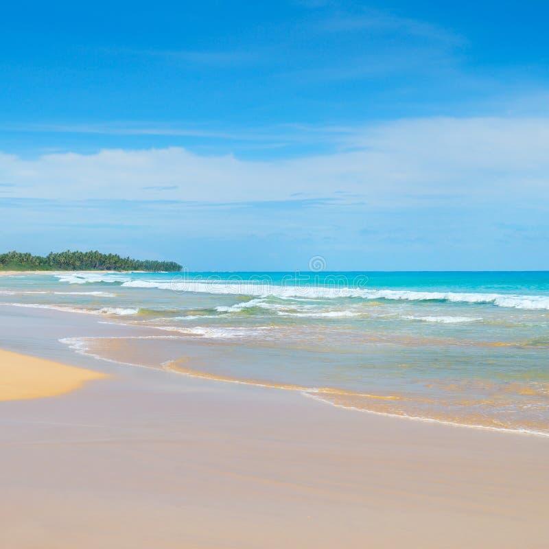 Oceano bonito, Sandy Beach longo fotos de stock