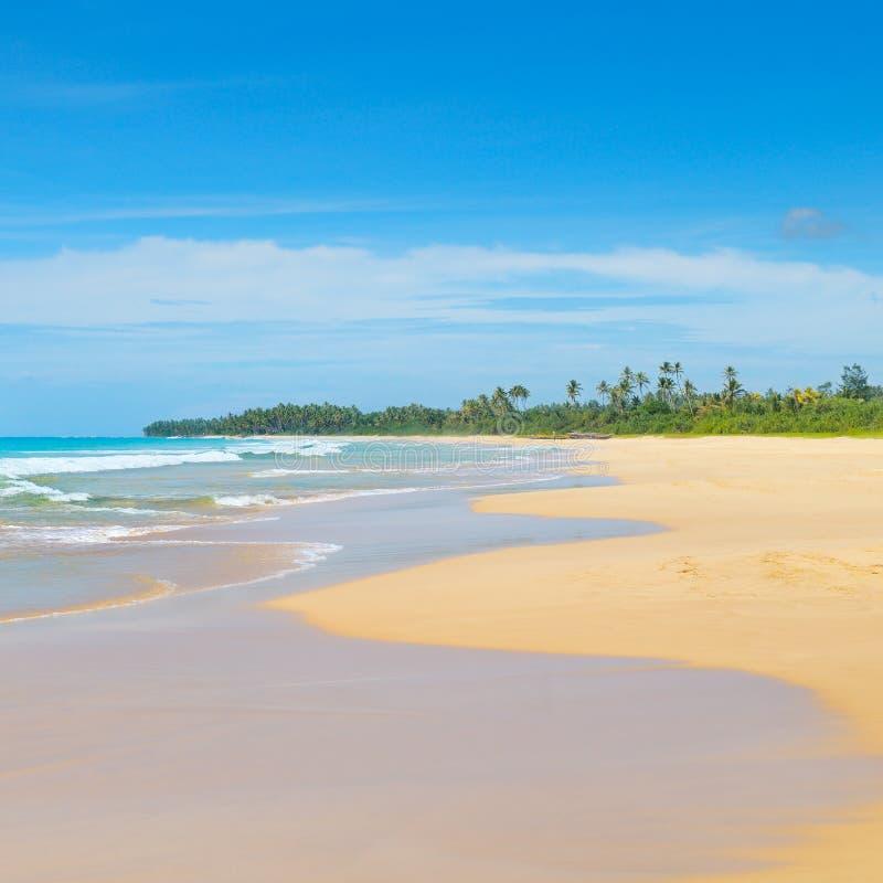 Oceano bonito, Sandy Beach longo foto de stock royalty free