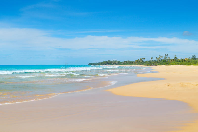 Oceano bonito, Sandy Beach longo e céu imagem de stock royalty free