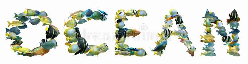 OCEANO da palavra composto dos peixes isolados fotos de stock royalty free