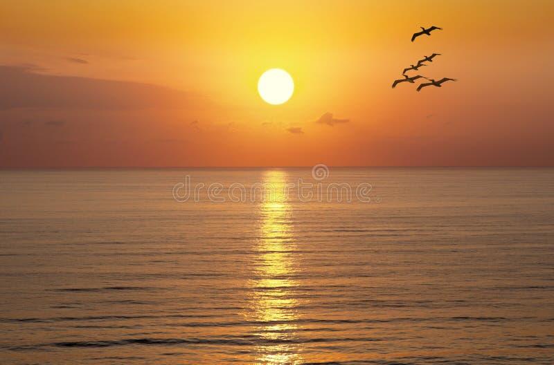 Oceano de Sun do por do sol do nascer do sol fotografia de stock