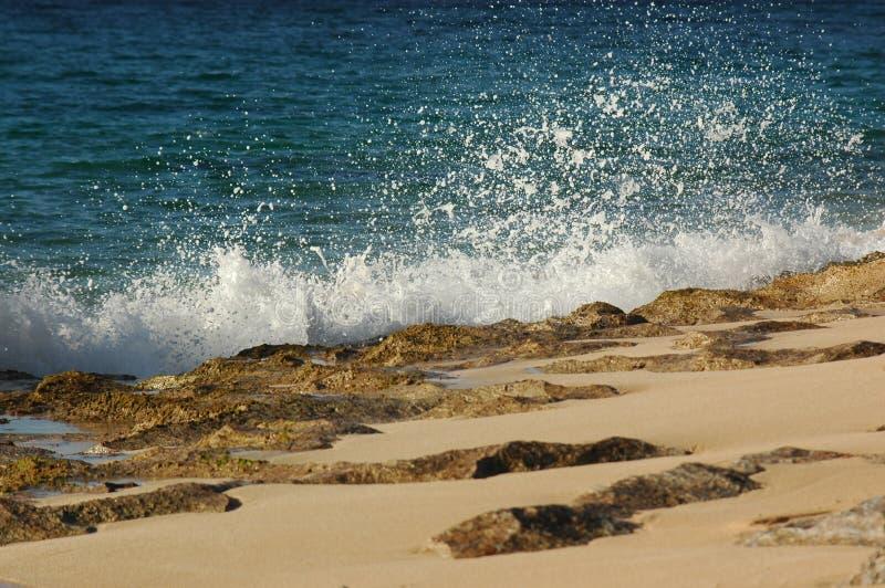 Download Oceano e puntello fotografia stock. Immagine di marea, hawai - 213306