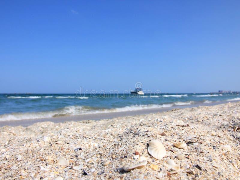 Oceano e spiaggia immagini stock