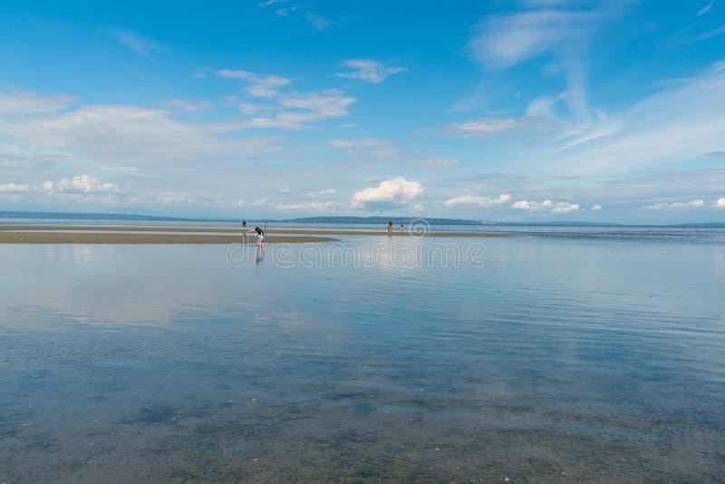 Oceano Pacífico que reflete o céu azul e as nuvens no delta, BC, Canadá imagens de stock royalty free