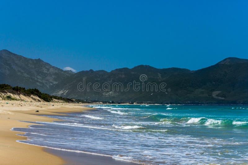 oceano selvagem da praia foto de stock