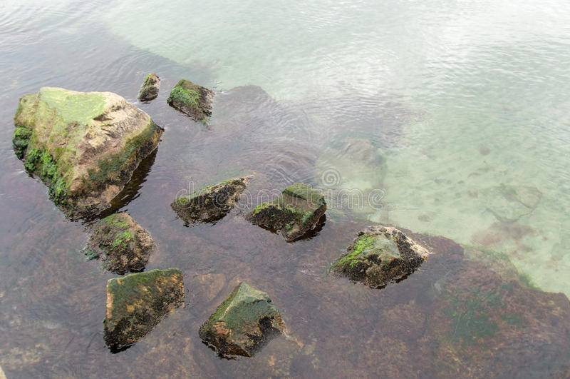 Oceano verde fresco foto de stock royalty free