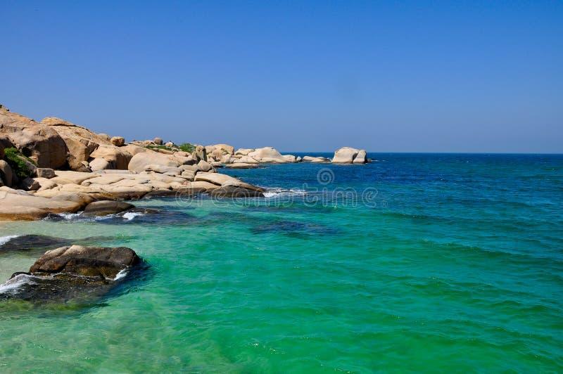 Oceano verde in un giorno soleggiato immagine stock