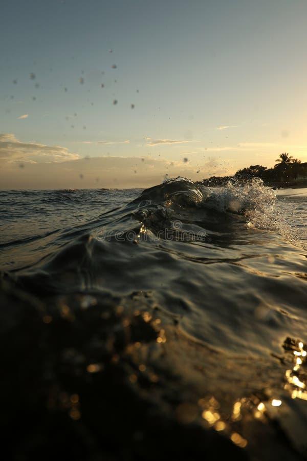 Oceano Wave fotografie stock libere da diritti