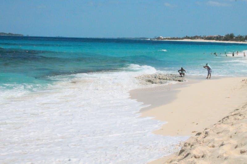 Oceanview στοκ εικόνες με δικαίωμα ελεύθερης χρήσης