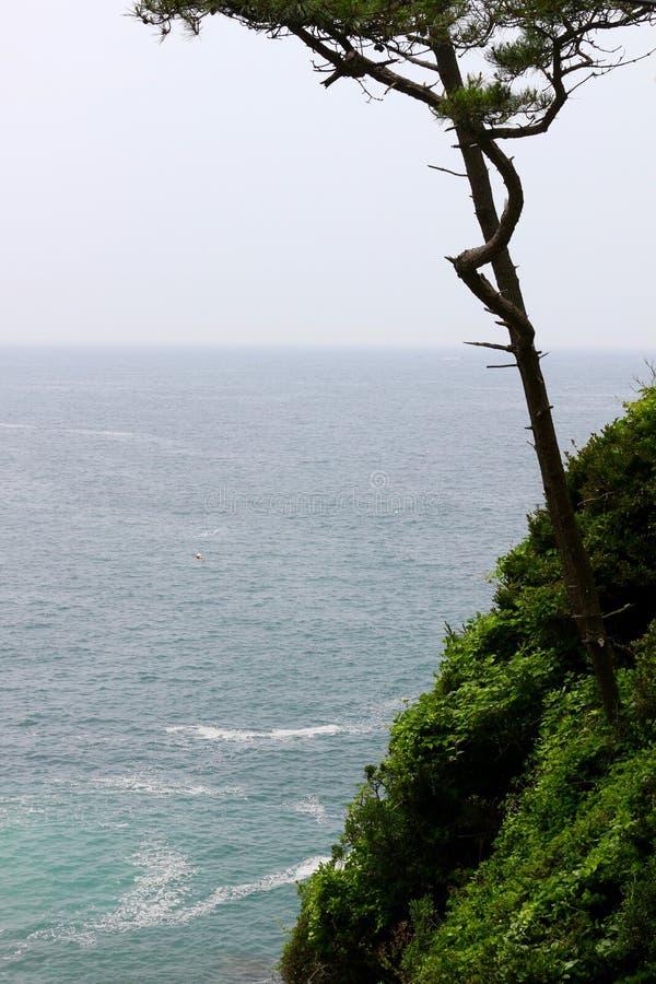 Oceanview στοκ φωτογραφία