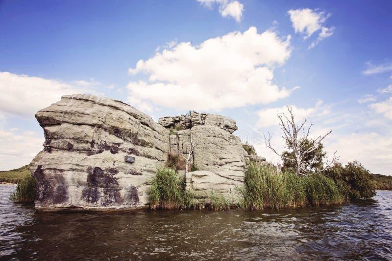 And- och musö på sjön Macha royaltyfria bilder