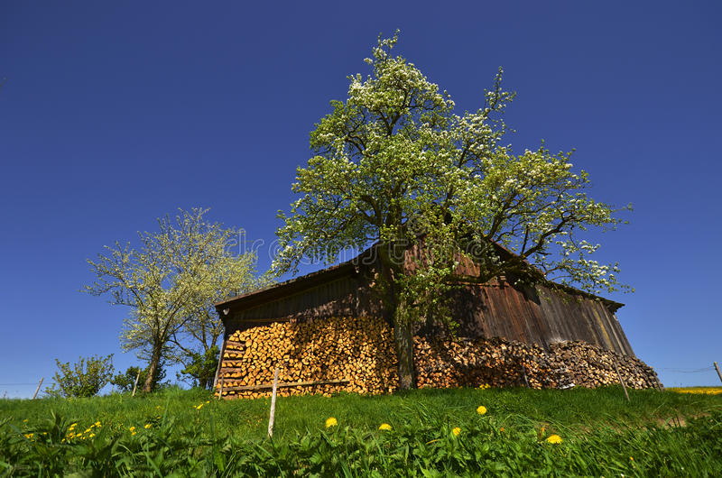 Ochard Hut Stock Images