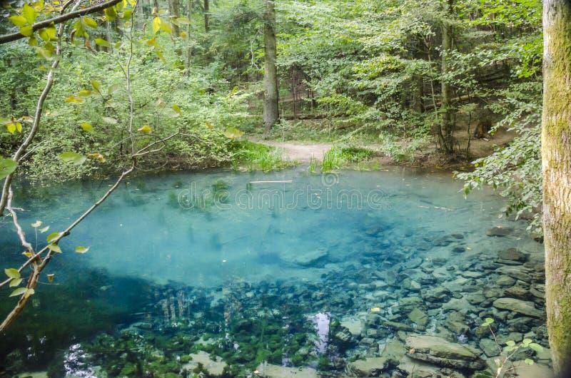 Ochiul Beiului sjö, Cheile Nerei —BeuÅŸniÅ£a nationalpark, Rumänien royaltyfria foton