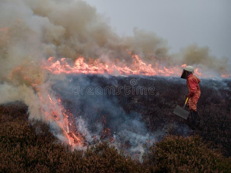 Ochotniczy kobieta strażak zdjęcia stock