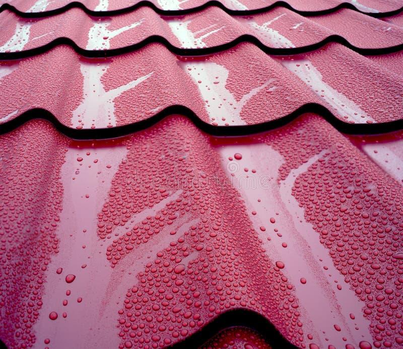 Ochraniać dom od deszczu i błota obraz royalty free