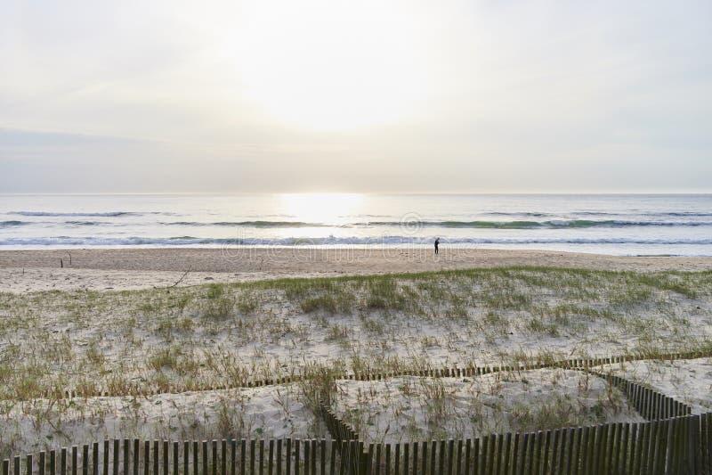 Ochraniająca plaża i diuny zdjęcia stock