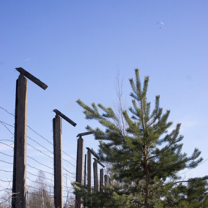 Ochrony ogrodzenie z drutem kolczastym fotografia royalty free