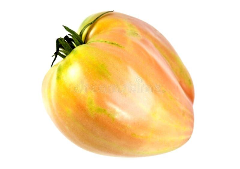 Ochsen-Herz-Tomate stockbilder
