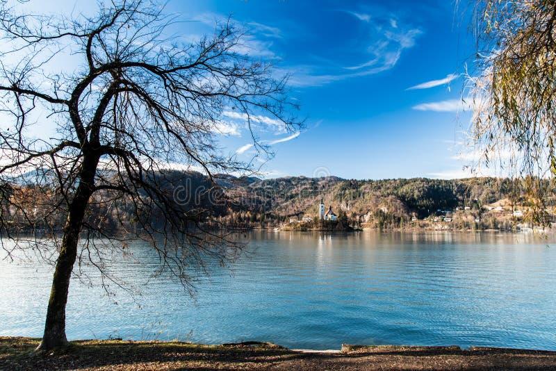 Ochtend bij het meer van Afgetapt royalty-vrije stock afbeelding
