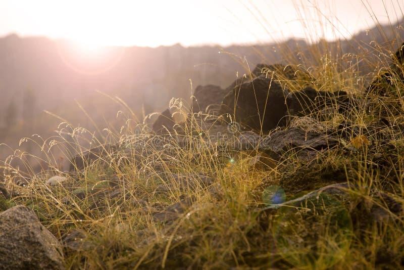 Ochtend in de bergen stock fotografie