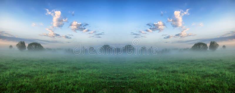 Ochtend een nevelige dageraad in een schilderachtige weide stock afbeeldingen