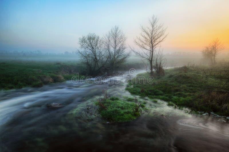 Ochtend mistige dageraad dichtbij een schilderachtige rivier stock afbeeldingen