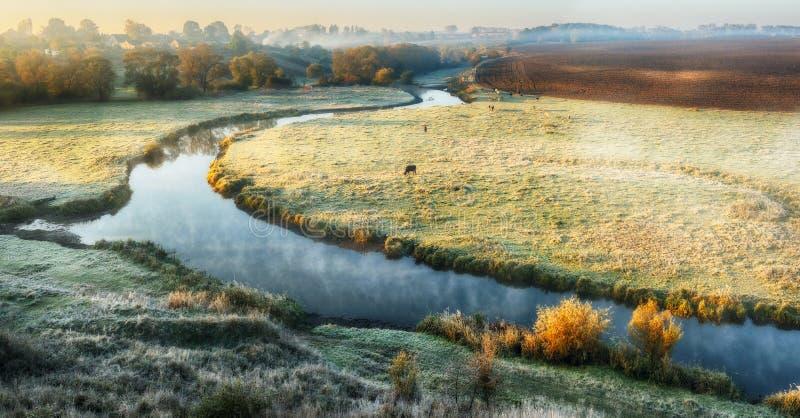 Ochtend mistige dageraad dichtbij een schilderachtige rivier stock foto