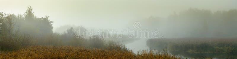 Ochtend nevelig landschap panorama van een smalle rivier met moerassige kusten in dichte mist stock fotografie