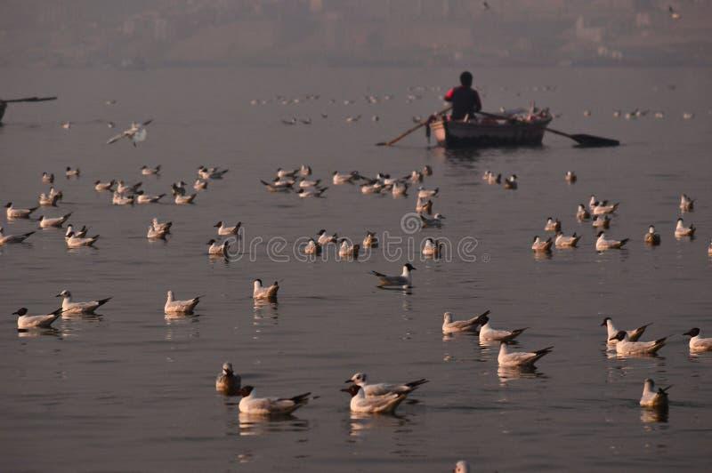 Ochtend op de Rivier van Ganges in Benaras royalty-vrije stock fotografie