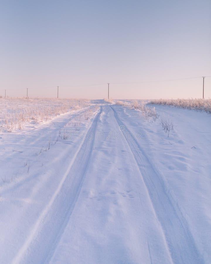Ochtend op een sneeuw-gevuld gebied stock foto