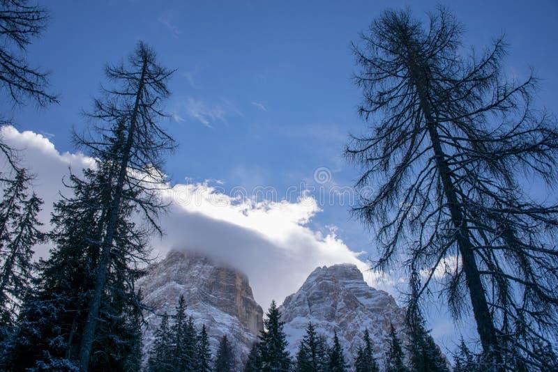 Ochtend op het Dolomiet stock foto