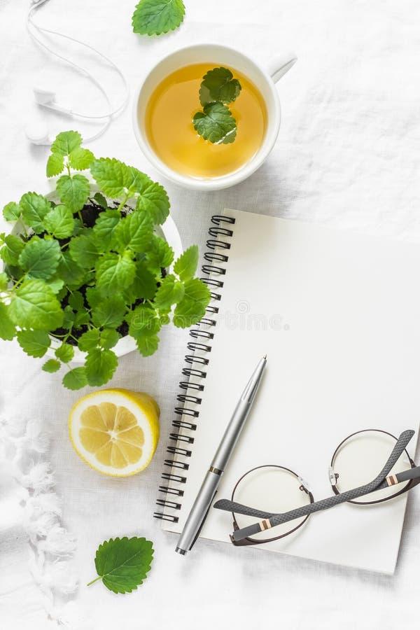 Ochtend planningsinspiratie en melissa citroen groene thee Lege blocnote, kop thee, melissa bloempot op een witte achtergrond, bo royalty-vrije stock afbeeldingen