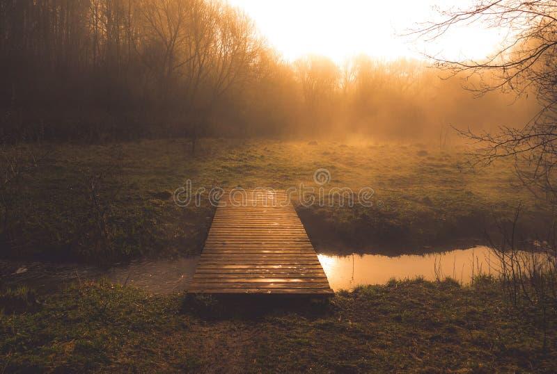 Ochtenddageraad met mist dichtbij waterstroom en voetgangersbrug royalty-vrije stock foto's